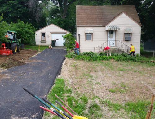 Lawn Restoration Q & A